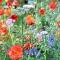 Floristika a kvetinový dizajn